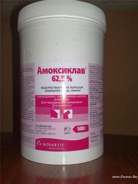 Инструкция По Применению Анзациклин - фото 4